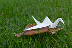 Origami crane in grass nature setting Royalty Free Stock Photography