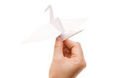 Origami crane in hand Stock Image