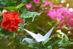Origami dans le jardin coloré Image stock