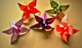 Origami. Decorative origami paper lilly  flowers on a neutral paper background Royalty Free Stock Photos