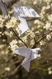 Origami doves on blooming spring tree Stock Photography