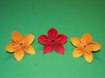 Origami flowers. Beautiful origami flowers isolated on green, kusudama Stock Image