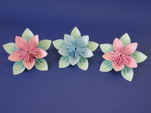 Origami flowers Stock Images