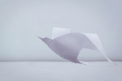 Origami freedom seagull. Origami paper freedom seagull bird above a waves Stock Photography
