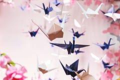 Origami giapponesi tradizionali sulle corde ai grafici e sakura del fondo Fotografia Stock Libera da Diritti