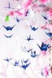 Origami giapponesi tradizionali sulle corde ai grafici e sakura del fondo Immagine Stock Libera da Diritti