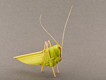 Origami grasshopper Stock Photos