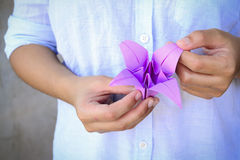 Origami Lilac. A picture of hands making origami lilac Royalty Free Stock Photos