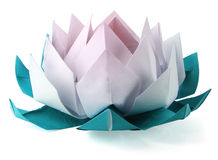 Origami lotus. On a white background Stock Image