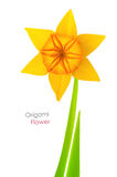 Origami narcissus Royalty Free Stock Photo