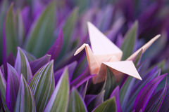 Origami paper crane in colorful foliage Stock Photography