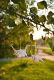 Origami paper cranes Royalty Free Stock Images