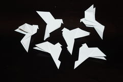 Origami pigeons on a black background. Stock Photos