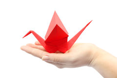 Origami. Red crane sitting on the women's hand. Isolated object Stock Photography