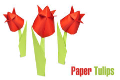 Origami red tulips Stock Photo