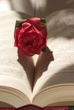 Origami rose casting a heart shadow. Origami rose on an open book casting a heart shadow Royalty Free Stock Photos