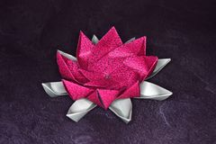 Origami rose Lotus Flower - art de papier sur le fond texturisé photos stock