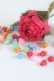 Origami rose with stars. Diffused shot of origami roses and stars on paper Royalty Free Stock Image