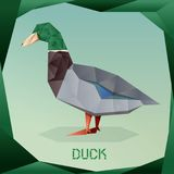 Origami simple Duck Stock Image