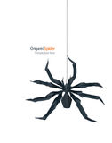 Origami spider Royalty Free Stock Photo