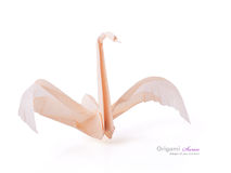 A origami swan Stock Photos