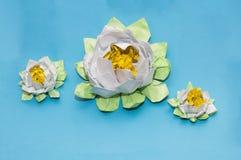 Origami: tre vita lotusblommor på den blåa bakgrunden av papperslak royaltyfri bild