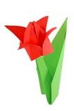 Origami tulip Stock Images