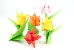 Origami Tulip Flower Stock Afbeelding