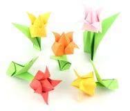 Origami Tulip Flower Royalty-vrije Stock Foto