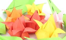 Origami Tulip Flower Stock Foto