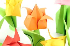 Origami Tulip Flower. Japanese paper art of tulip flower on white back ground Stock Image