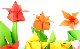 Origami Tulip Flower. Japanese paper art of tulip flower on white back ground Stock Photos
