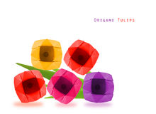 Origami  tulip flowers Stock Photography