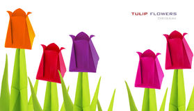 Origami tulip flowers royalty free stock images