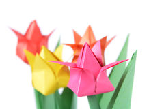 Origami tulip isolated over white Stock Photo