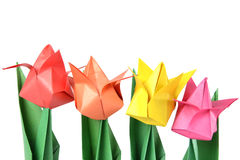 Origami tulip isolated over white Royalty Free Stock Images