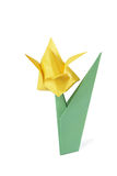 Origami tulip isolated over white Royalty Free Stock Photo