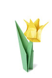 Origami tulip isolated over white Royalty Free Stock Image