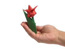 Origami tulip over white Stock Images