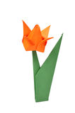 Origami tulip over white Stock Photography