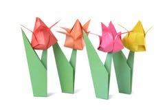 Origami tulipan odizolowywający nad bielem Obrazy Stock