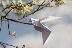 Origamiduva på blommande vårträd Arkivbilder