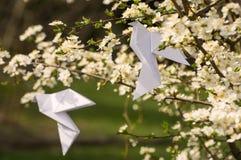 Origamiduva på blommande vårträd Arkivfoto