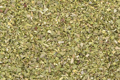 Origan spice Royalty Free Stock Photo