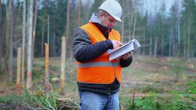 Originais da leitura do coordenador da floresta na floresta vídeos de arquivo
