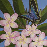 Original Acrylic Painting - Ulysses Butterfly & Frangipani. Original acrylic painting of Ulysses butterfly and frangipani flower Royalty Free Stock Image
