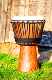 Original african djembe drum with leather lamina, on green in sun light Royalty Free Stock Photo