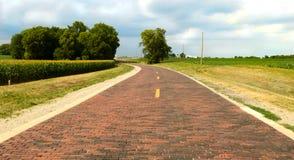 Original- avsnitt av tegelstenvägen på Route 66 nära kastanjebrunt, Illinois Royaltyfria Foton