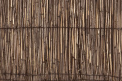 Original background of dry cane. Original background of dry reeds intertwined with metal wire Stock Image