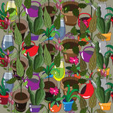 Original background with household plants. Original von pet plants, watering cans and flowers in a vase Stock Photo